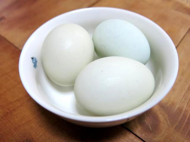 小川養鶏場 若草卵